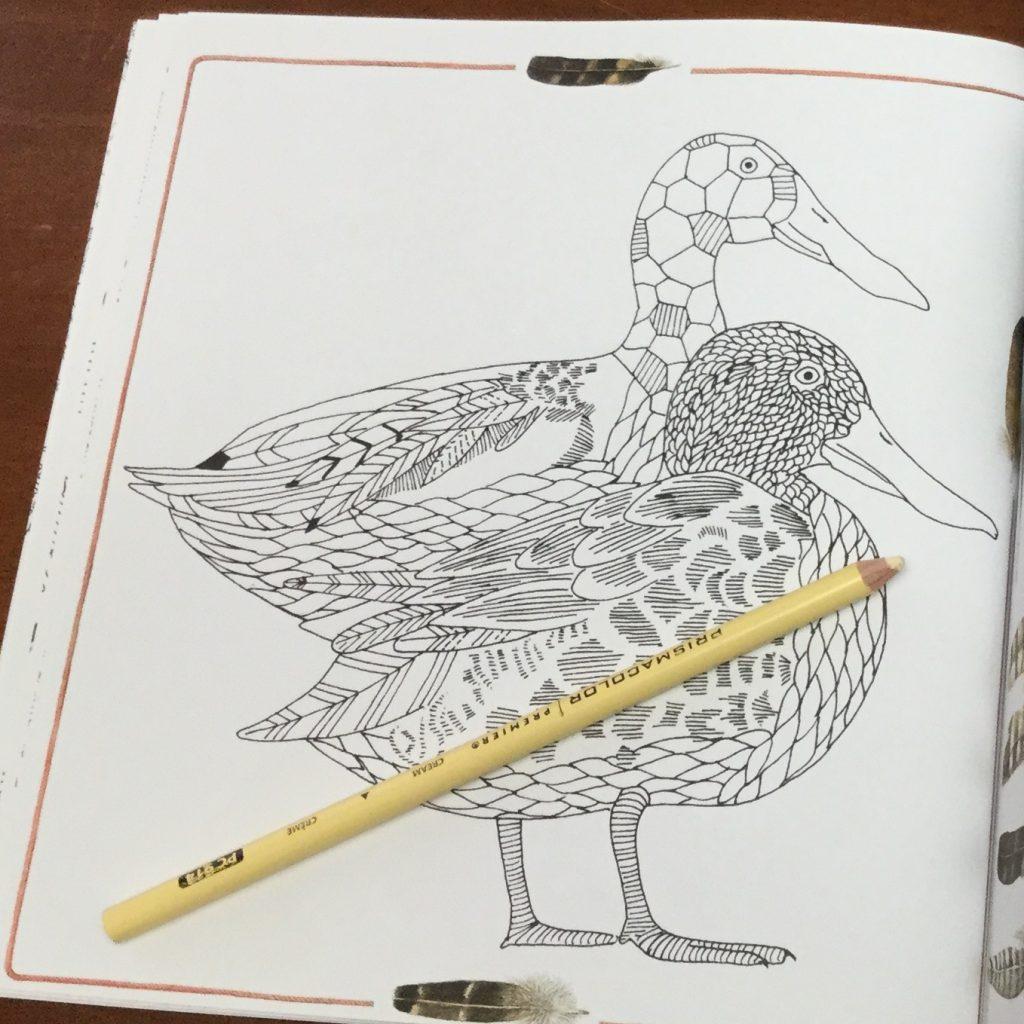 Zauberhafte  1437 1024x1024 - Meine Zauberhafte Natur  (My Magical Nature) Coloring Book Review
