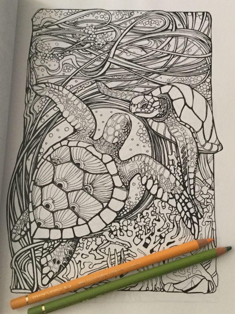 Manic Botanic Coloring Book Review6 765x1024 - Manic Botanic Coloring Book