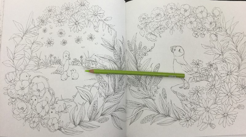 Flowers & Birds Coloring Book Review | Coloring Queen