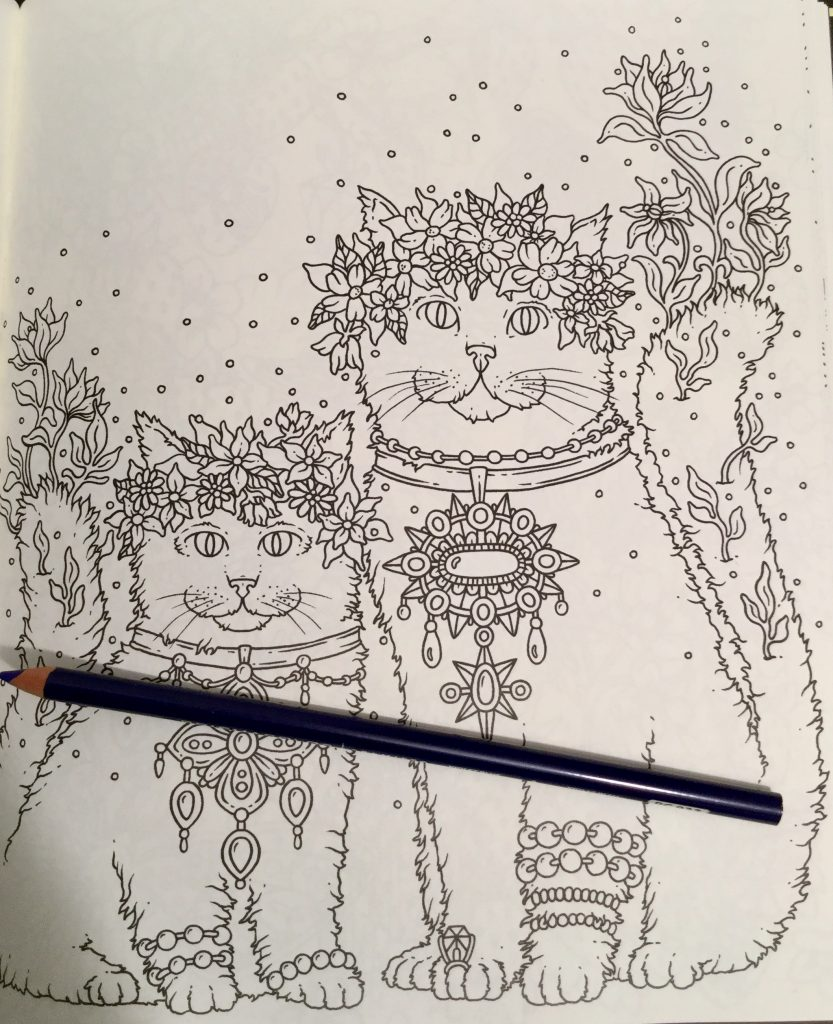 two cute cats with floral garlands