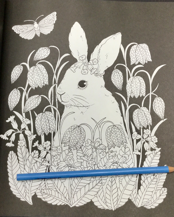 Skymningstimman Coloring Book Maria Trolle 29 - Skymningstimman Coloring Book Review