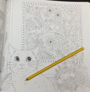 keiko cat coloring book 27 296x300 - keiko_cat_coloring_book_27