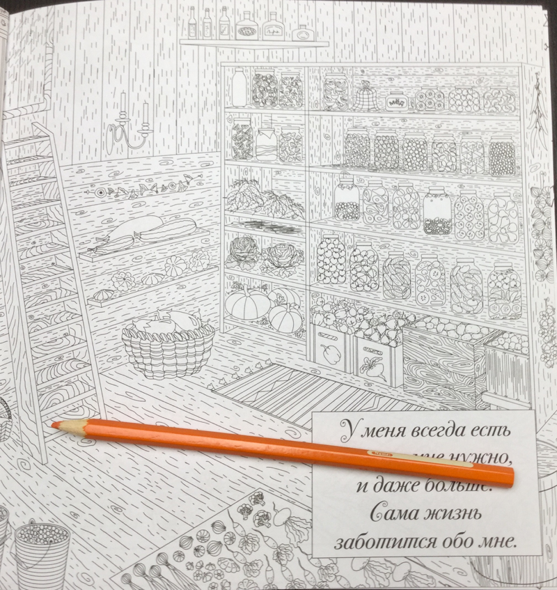 The Magic Room Russian Coloring Book 65 - Natalia Pokatilova: The Magic Room Coloring Book Review