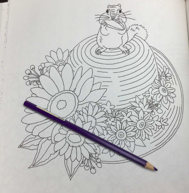 animals flowers coloring book 27 - Animals Of The Flower Time  Coloring Book Review