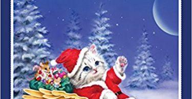 santas kitty helpers coloring book 375x195 - Nature: A Seasonal Coloring Book Review