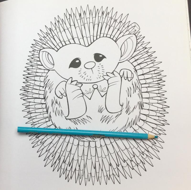 Alices Little Wonderlands Coloring Book 27 - Alice's Little Wonderlands Coloring Book Review