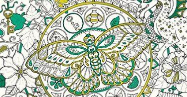 Ivy and the inky butterfly coloring book review 375x195 - Craig Holland