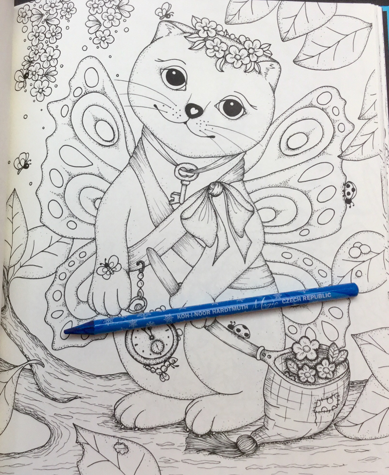enderful Enchantments Coloring Book Review 34 - Tenderful Enchantments Coloring Book Review