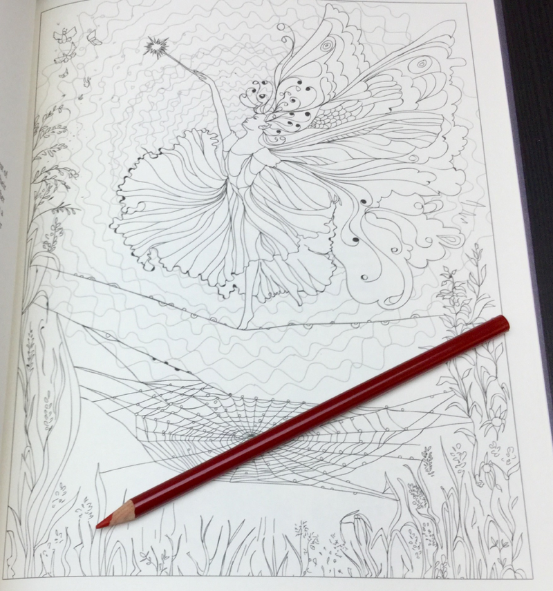 Enchanted Fairies Coloring Book Review | Coloring Queen
