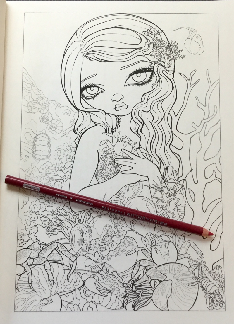 Mermaids Coloring Book An Aquatic Art Adventure Review