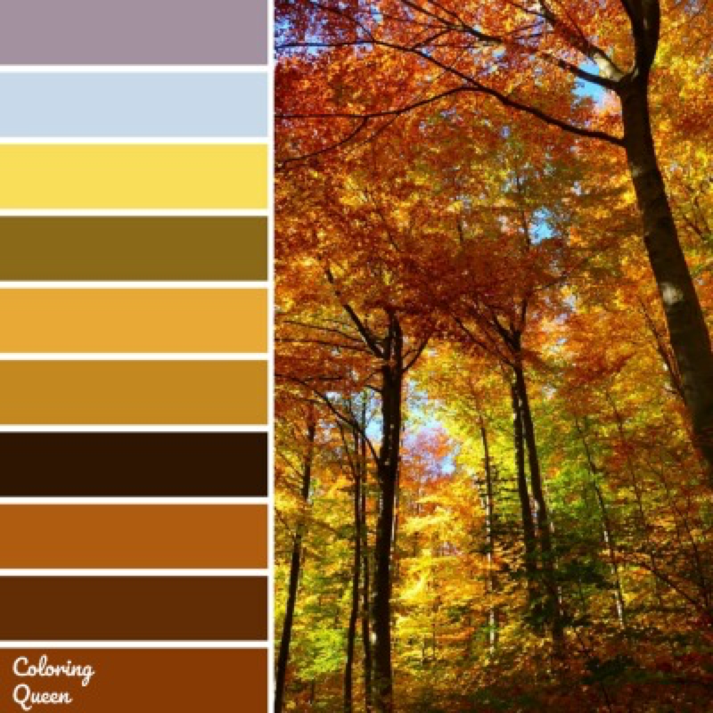 Autumn Trees Color Scheme