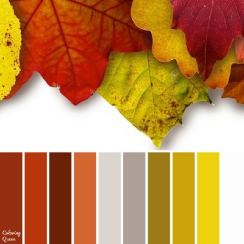 Colorful leaves color scheme