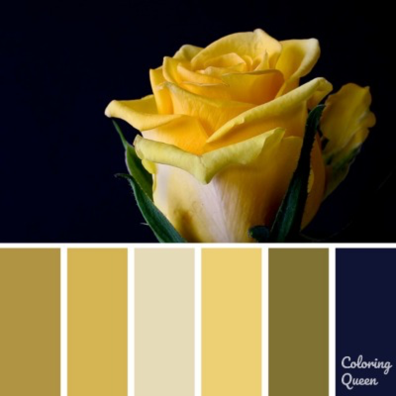 Yellow rose bloom color scheme