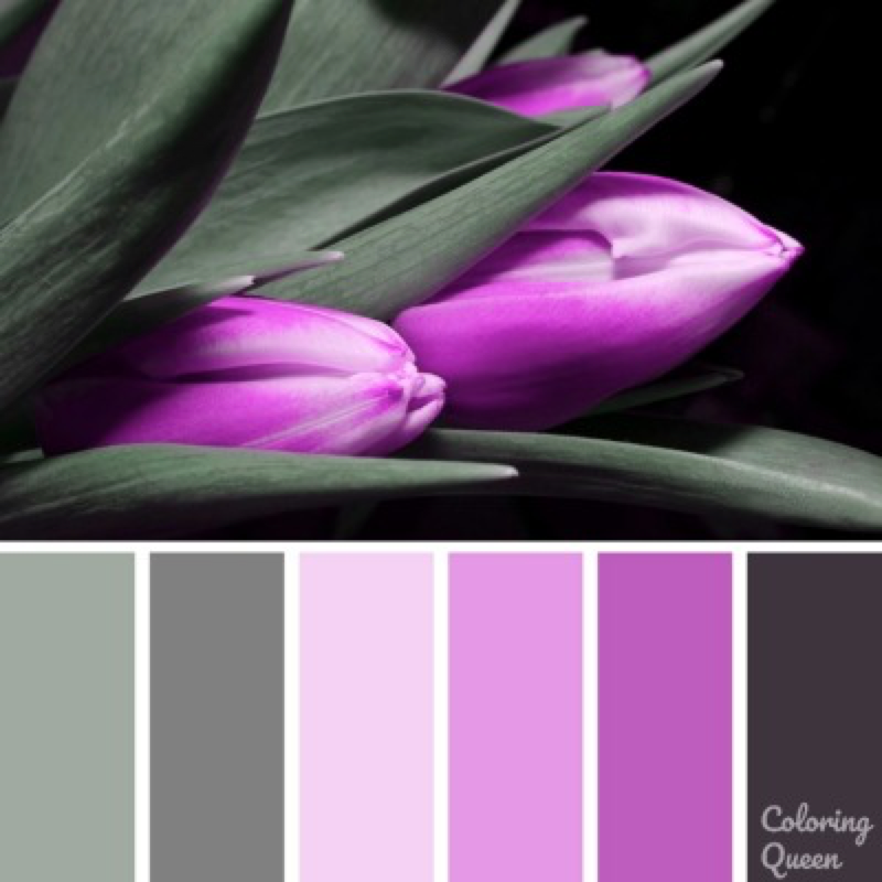 Purple tulip color palette