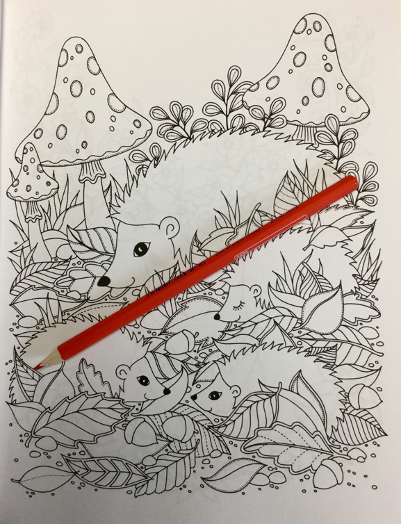 woodland animals coloring book  4860 - Woodland Animals Coloring Book Review