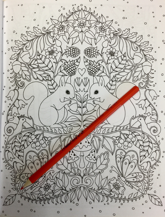woodland animals coloring book  4861 - Woodland Animals Coloring Book Review