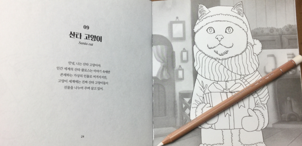 Picture of Santa cat from 100 Korean cats coloring book