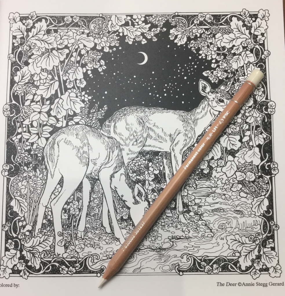 moonlit vale colouring book review 984x1024 - The Moonlit Vale Coloring Book Review