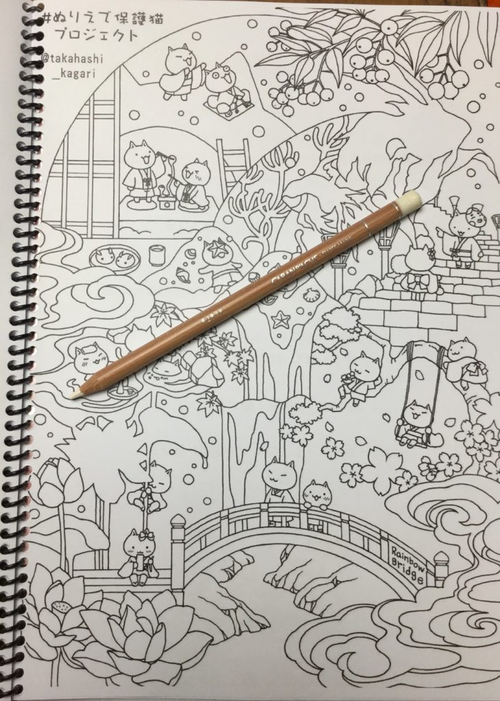 Cats Protection Coloring Book