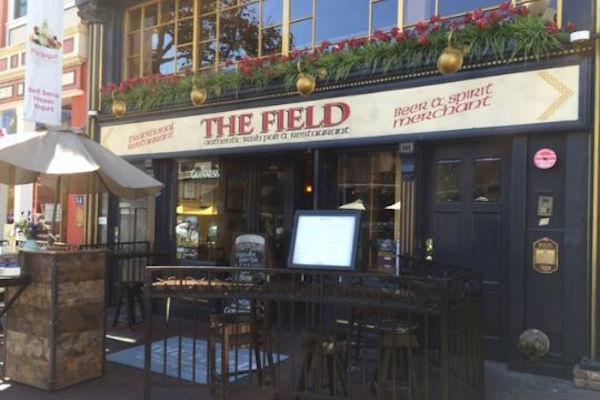 The Field Irish Pub
