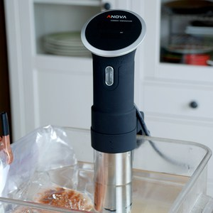 Anova precision cooker food bag