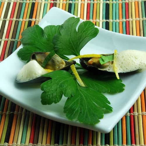 Gelatin foam recipes articles amazing food made easy mussels with curry foam recipe forumfinder Gallery