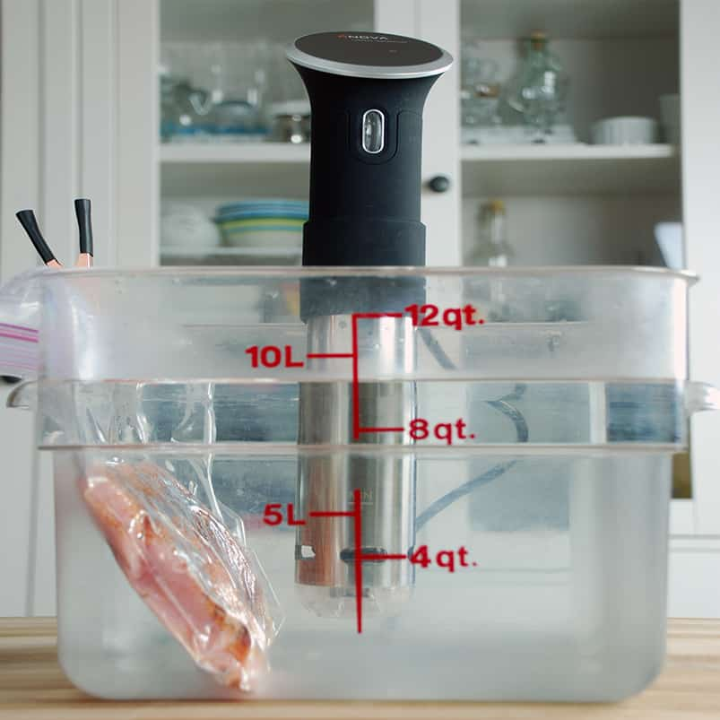 Anova precision circulator sous vide square