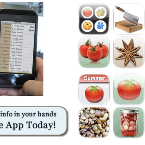 Smart phone apps food blogger