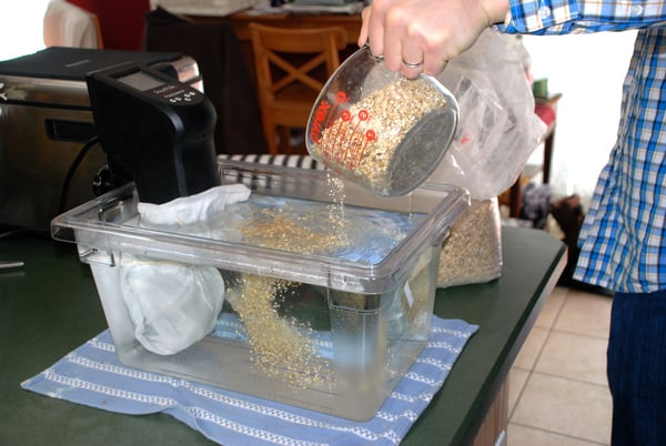 Beer grains into cambro container