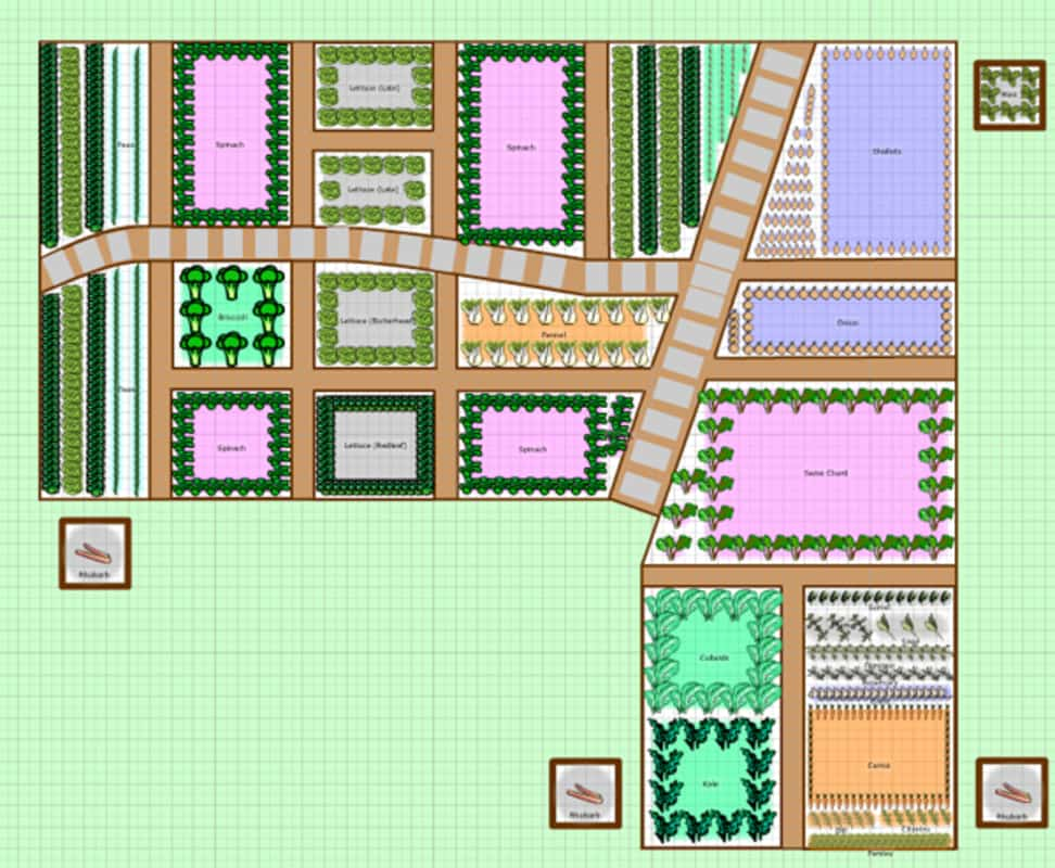 Vegetable garden planner for Vegetable garden planner