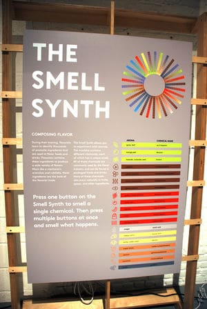 Mofad smell synth