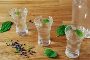 Mint chocolate infused vodka shots