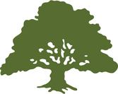Tree %283%29 1