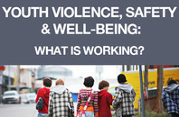 Youth Violence, Safety and Well-Being