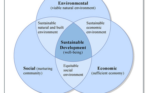 A 3-step sustainability action plan for business leaders
