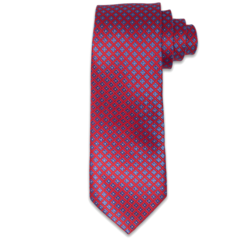 Campaign Friendly Red & Blue Textured Tie