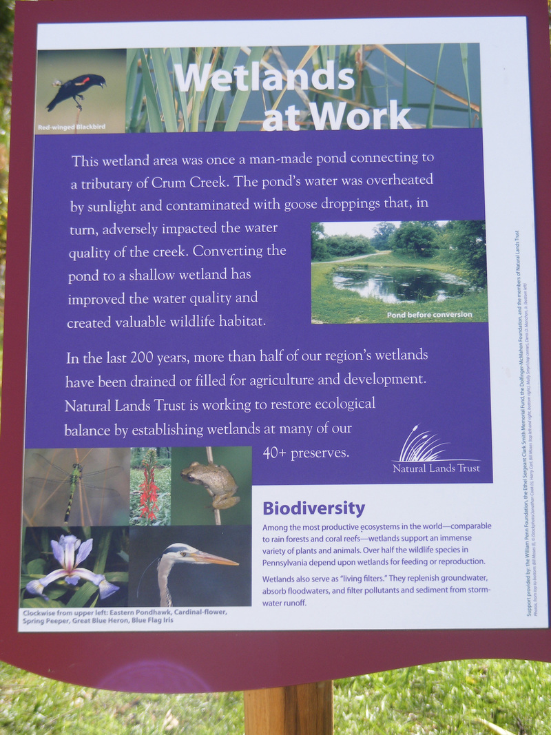 Natural Lands Trust uses intertretive signage to further connect visitors to the land.