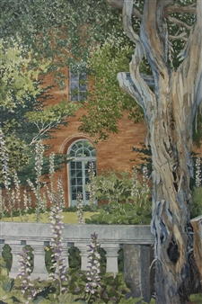 Duane Anderson - Acanthus Grove Watercolor on Paper, Paintings