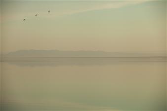 Mario De La Isla - Salton Sea 4 Photograph on Fine Art Paper, Photography