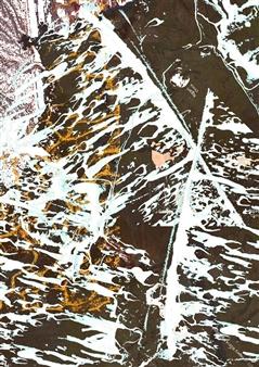 Rejane Dal Bello - EarthArt_008 Giclee Print on Paper, Digital Art