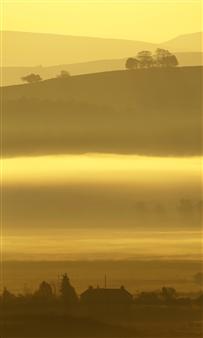 Martin Grace - Genesis 1 v7 Photographic Print on Aluminum Dibond, Photography