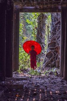 Mache del Campo - Little Monk Color Digital Photography, Photography