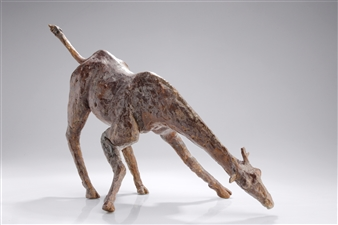Arno Goossens - Drinking Giraf Bronze, Sculpture