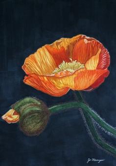 Josie Mengai - Orange Poppies Digital Print on Aluminum, Prints