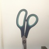 Scissors-green_thumb