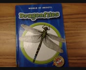 Dragonflies by Lydia