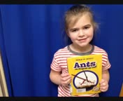 Ants By:Anna