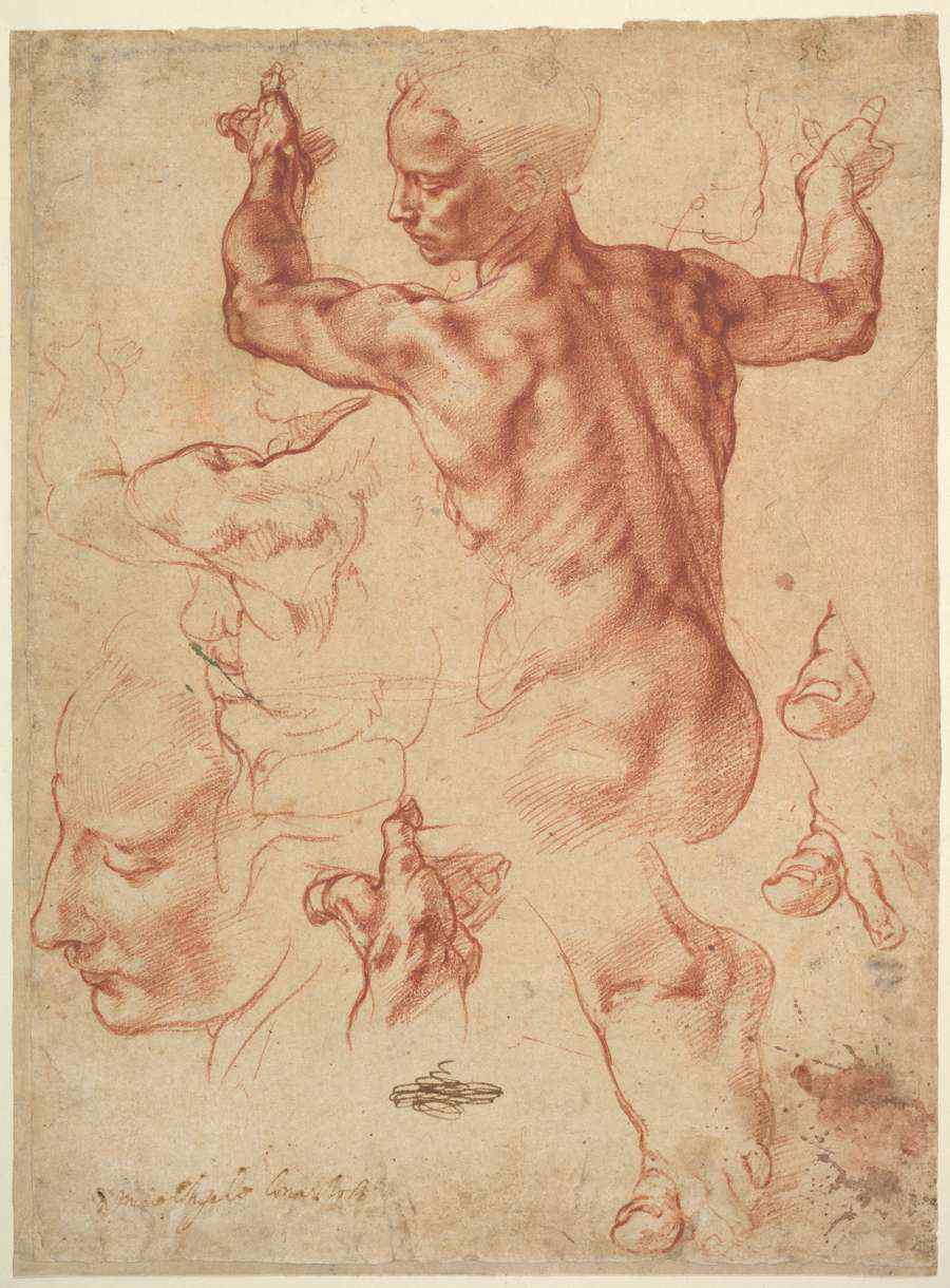 Moving-art - Michelangelo Buonarroti - Studies for the Libyan Sibyl - Drawing - Chalk - The Metropolitan Museum of Art