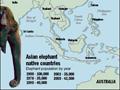 Asia's Elephant Population