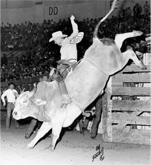 Cowboy Freckles Brown grasps the rope atop bull #69 in 1966 at the National Finals Rodeo in Oklahoma City.